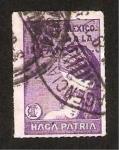Stamps : America : Mexico :  Proteja a la infancia, haga patria