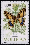 Stamps Europe - Moldova -  Mariposas