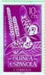 Sellos de Africa - Guinea -  Día del sello. Insectos. Guinea Española