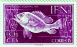 Stamps Spain -  IFNI. Día del sello 1953 peces