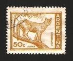 Sellos de America - Argentina -  fauna, puma