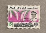 Stamps Asia - Malaysia -  Planta Rynchostilis etusa