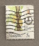 Stamps Asia - Malaysia -  Planta cacao