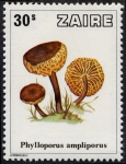 Stamps Africa - Democratic Republic of the Congo -  Zaire