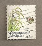 Stamps Asia - Malaysia -  Oryza sativa