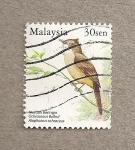 Stamps Malaysia -  Ochraceous bulbul
