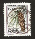Sellos del Mundo : Europa : Polonia : flora, pinus strobus