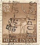 Stamps India -  CHITAL