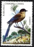 Stamps Spain -  Fauna hispánica. Rabilargo.