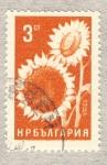 Stamps Bulgaria -  girasol