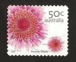Sellos de Oceania - Australia -  flora, swamp daisy