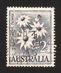 Stamps : Oceania : Australia :  flor flannel