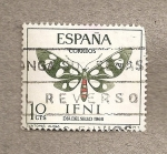 Stamps Spain -  Ifni, Mariposa Syntomis alicia