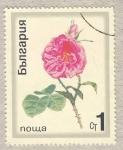 Sellos de Europa - Bulgaria -  rosa rosa