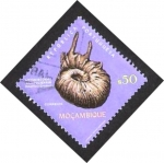 Stamps Africa - Mozambique -  lytodiscoides conduciensis