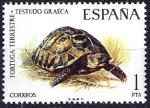 Sellos de Europa - España -  Fauna hispánica. Tortuga terrestre.