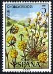 Stamps Spain -  Flora. Anthyllis onobrychioides.
