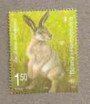 Stamps Bosnia Herzegovina -  Liebre