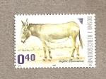 Stamps Bosnia Herzegovina -  Asno