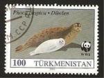 Sellos del Mundo : Asia : Turkmenistán : fauna, phoca caspica