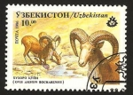 Sellos del Mundo : Asia : Uzbekistán : ovis ammon bocharensis