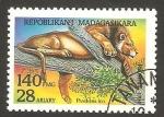 Stamps Madagascar -  león pantera