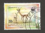 Sellos del Mundo : Africa : Níger : WWF - 1167 - Fauna, gazella dorcas