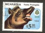 Stamps America - Nicaragua -  fauna, danto (tapirus bairdii)