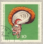Stamps Europe - Germany -  DDR Völkerkundemuseum Leipzig  Tanzmaske Südsee