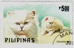 Sellos de Oceania - Filipinas -  Raza de gato chinchilla