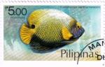 Sellos del Mundo : Asia : Filipinas : Pez ángel azul de cara