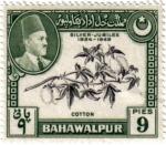 Sellos de Asia - Pakistán -  Bodas de plata  1924-1949. Algodon