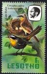 Sellos del Mundo : Africa : Lesotho : Aves. Petirrojo. Cassypha caffra Sethoenamoru.