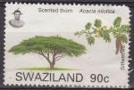 Stamps Africa - Swaziland -  SWAZILAND Sello Serie Arboles. Acacia usado