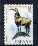 Stamps Europe - Spain -  cabra montes