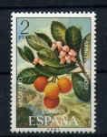 Stamps Spain -  madroño