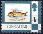 Sellos de Europa - Gibraltar -  Peces. Mullus sumuletus.