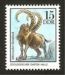 Stamps Germany -  steinbock siberiano