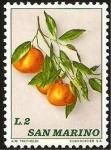 Stamps : Europe : San_Marino :  racimo de fruta