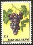 Stamps : Europe : San_Marino :  racimo de uvas