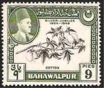 Stamps Asia - Pakistan -  bahawalpur, algodon