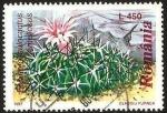 Sellos de Europa - Rumania -  flora, echinofossulocactus lamellosus