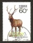 Stamps China -  fauna, elaphurus davidianus