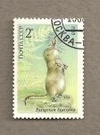Stamps Russia -  Especies en peligro