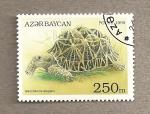 Sellos del Mundo : Asia : Azerbaiyán : tortuga Geochelone elegans