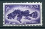 Sellos de Europa - España -  Cabracho