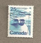 Sellos de America - Canadá -  Osos polares