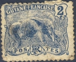 Stamps America - French Guiana -  Oso hormiguero