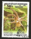Stamps : Asia : Cambodia :  fauna marina, pulpo