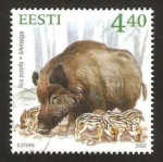 Stamps Europe - Estonia -  fauna, sus scrofa